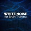 White Noise 2015