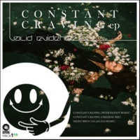 Valid Evidence Constant Craving(Original Mix)