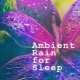 Rain Sounds Ambience Ambient Rain for Sleep