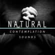 Natural Concentration Sounds River Mouth