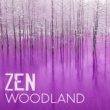 Zen Natural Meditation