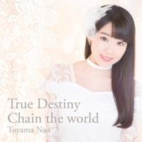 東山 奈央 True Destiny / Chain the world