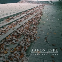 Aaron Espe Everyday