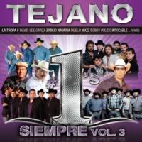 ヴァリアス・アーティスト Tejano #1´s Siempre [Vol.3]