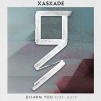 Kaskade Disarm You (feat. Ilsey) [Grey Remix]
