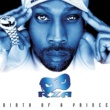 RZA Birth of a Prince