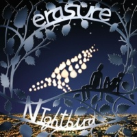 Erasure Because Our Love Is Real