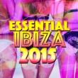 Essential Dance 2015/Nicola S Totally Fine