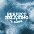 Relaxing Nature Ambience
