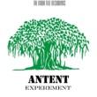 Antent Experement