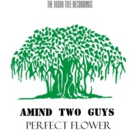 Amind Two Guys Perfect Flower