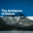 Ambiance nature,Ambient Nature Sounds&Bird Sounds The Ambience of Nature