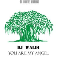 DJ WALDI You Are My Angel