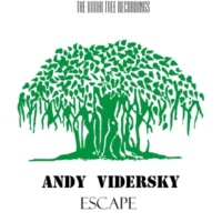 Andy Vidersky Escape