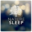 Dreams of Nature Nature: Sleep