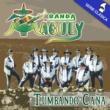 Banda Maguey Tumbando Caña (El Alacrán)
