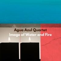 Agua Azul Quartet Flipper Juan