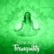 Spa Music Paradise New Age Tranquility
