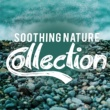 Sounds of Nature for Deep Sleep and Relaxation,Nature Sound Series&Nature Sounds for Sleep and Relaxation Soothing Nature Collection
