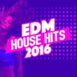 EDM House Hits EDM House Hits: 2016