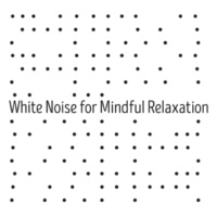 Sounds of Nature White Noise for Mindfulness Meditation and Relaxation White Noise: Fan Sounds