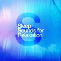 Deep Sleep Meditation and Relaxation Lotus Flower
