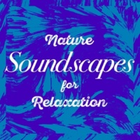 Sounds of Nature for Deep Sleep and Relaxation Life at the Start of the Stream