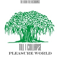 Till I Collapse Pleasure World