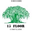 13 Floor I Declare