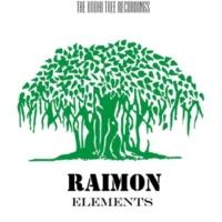 Raimon Elements