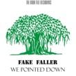 Fake Faller We Pointed Down
