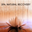 Spa Music 2016 Spa: Natural Recovery