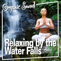 Organic Sound Roaring Waterfall Power