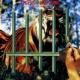 タイガース・オブ・パンタン The Cage