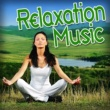 Meditation Spa Relaxation Music: For Relaxing, Stress Relief, Yoga and Tai Chi