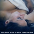 Spa, Relaxation and Dreams Sounds for Calm Dreaming ‐ Restful Night, Peaceful Music, New Age Dreaming, Sleep Well