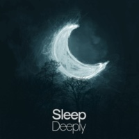 Deep Sleep Power of Sleep