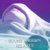Nature Sounds Relaxation: Music for Sleep, Meditation, Massage Therapy, Spa Healing Massage