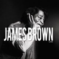 James Brown Try Me