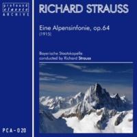 Richard Strauss Eine Alpensinfonie für Orchester, Op. 64 (TrV 233): Ausklang - Nacht