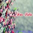Thuy Ngan Dao Lieu