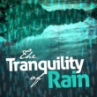 Natural Rain Sounds The Tranquility of Rain