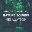 Various Artists Nature Sounds: Relaxation