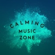 Calming Music Academy Calming Music Zone