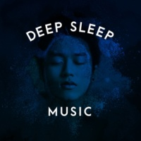 Deep Sleep Meditation The Reservoir