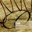 DIB,Flamen&Kryss Hypnowave Kinetophone 001