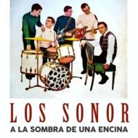Los Sonor A la Sombra de una Encina