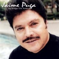 Jaíme Puga Paisaje Mexicano