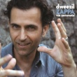Dweezil Zappa On Fire