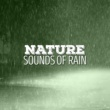 Sounds of Nature White Noise Sound Effects Watching the Rain